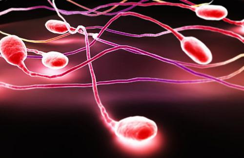 Microscopic stylized view of sperm.
