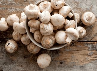 Một số loại nấm